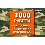3000 РУБЛЕЙ К 23 ФЕВРАЛЯ!