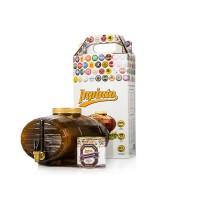 Домашняя пивоварня Inpinto Premium